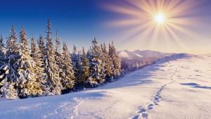 Mesec december v luči energijskega dogajanja